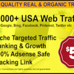 Paid Advertisement For Website Traffic